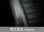 黑色真皮Vienna
