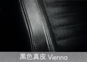 迈腾黑色真皮Vienna