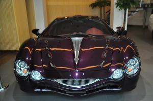 进口大蛇 紫色