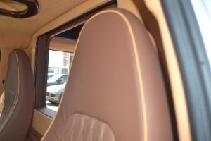 GMC商务之星(进口)驾驶员头枕图片