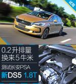 DS 5DS5 图解-香槟金图片