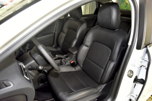 C4世嘉驾驶员座椅图片