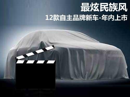 最炫民族风 12款自主品牌新车年内上市