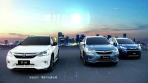 2017款比亚迪秦EV300
