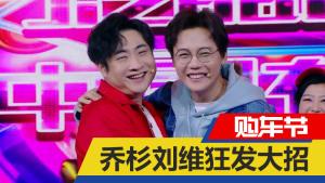 乔杉 刘维花式硬植 购车省钱秘籍遭泄露