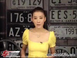 汽车资讯 新乐风 乐骋2011年投产