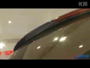 2010北京车展 东风风行展台景逸