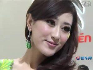2010北京车展 长安奔奔miniEV车模