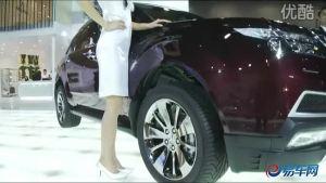 2010广州车展  讴歌MDX靓丽车模