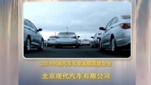 2015年度汽车盛典 年度品牌成就企业