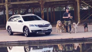 斯柯达明锐旅行版 狗狗们的欢乐空间