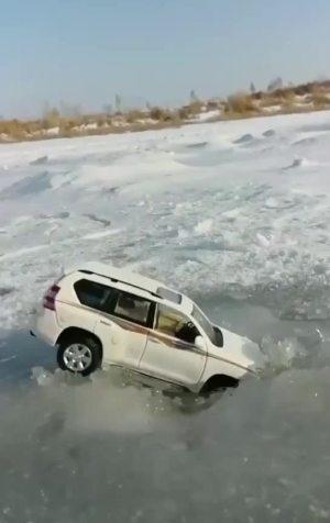 霸道掉冰窟窿里了!
