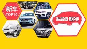 速腾换代终结思域加价 这10台新车今年扎堆进中国