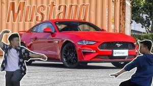 借台Mustang去相亲!30万肌肉车也能获女神芳心
