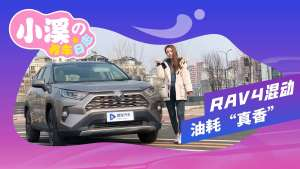 "RAV4荣放双擎养车成本实测:油耗""真香"""